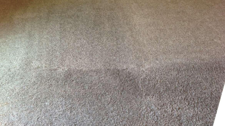 Carpet Cleaning Laguna Niguel Services