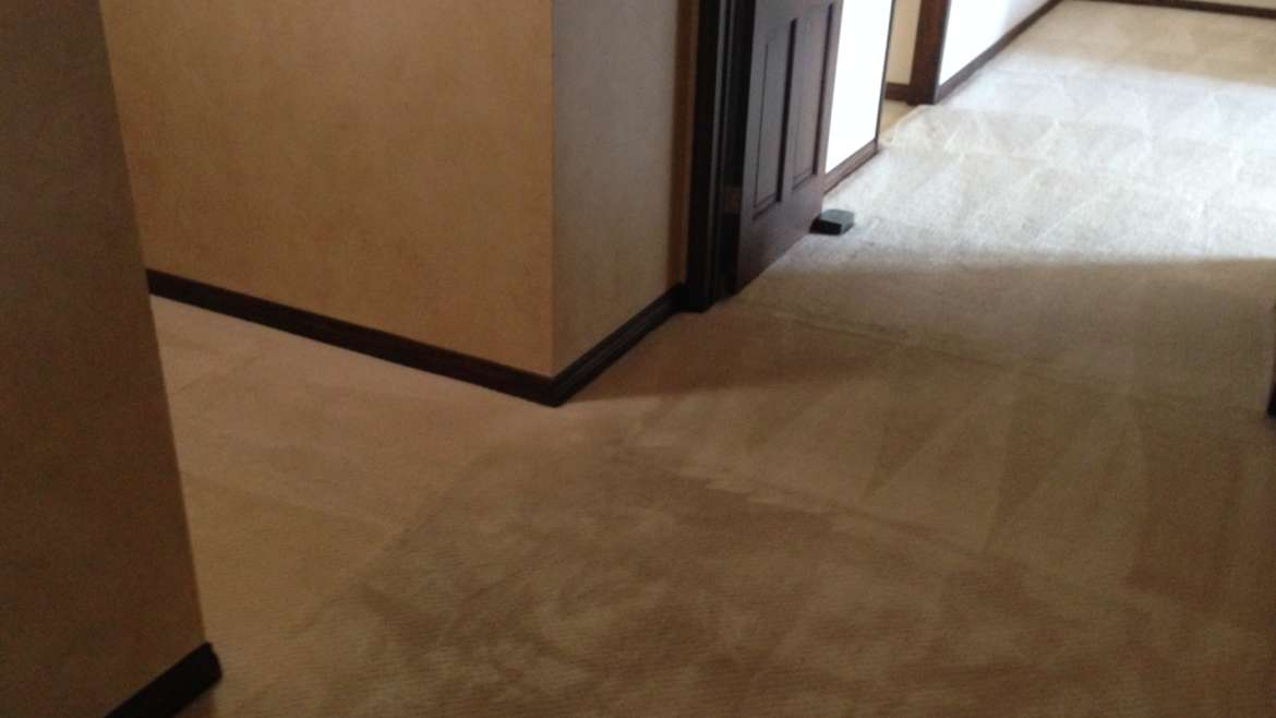 Carpet Cleaning Ladera Ranch Services