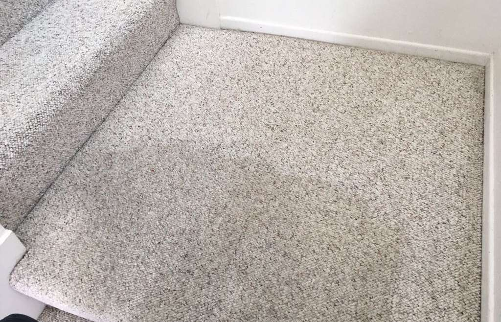 Carpet Cleaning Garden Grove Services