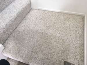 carpet cleaning garden grove