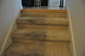 carpet cleaning rancho santa margarita