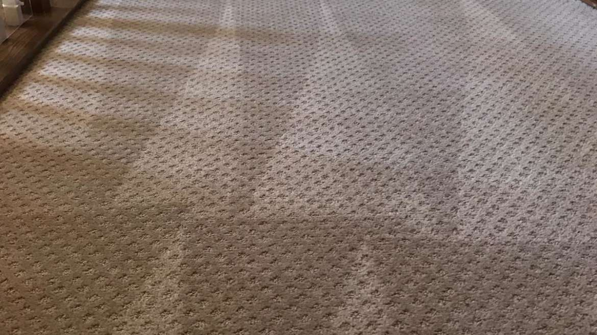 Carpet Cleaning in Orange County, California