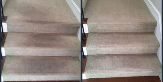 Carpet Cleaners Orange County