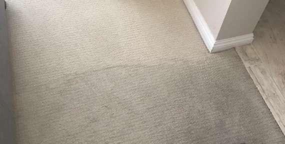 Deep Carpet Cleaning in Orange, CA.